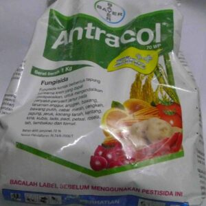 antracol-70-wp-1-kg-fungisida