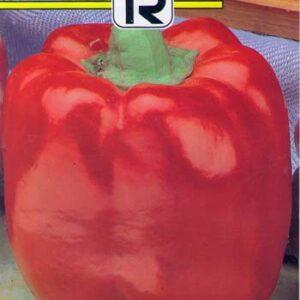 ardei-blocky-red-f1