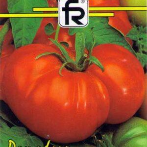 tomate-beefmaster-f1