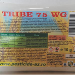 tribe 10 g