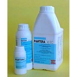 pantera-500x500