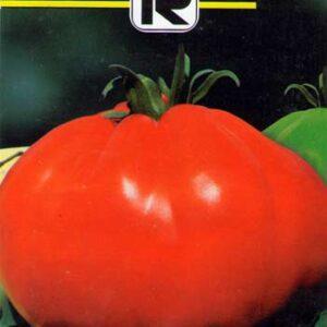 tomate-pearson-sel-dalbenga